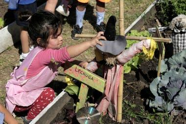 Kindergarten kids use the garden as an