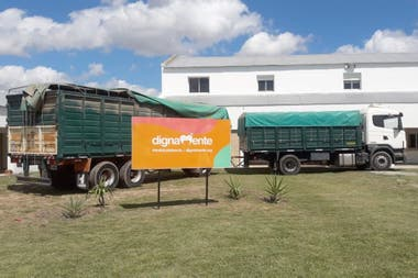 The Egg truck, in front of the headquarters of Dignamente